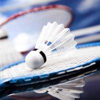 Dorking Badminton Club